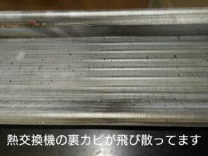 熱交換器の裏、カビが飛び散ってます